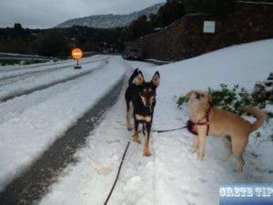 Blocked road because of snow on Crete.
