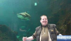 shark Crete Aquarium