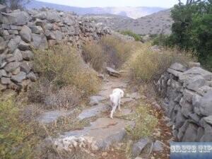 Hiking path Spinalonga