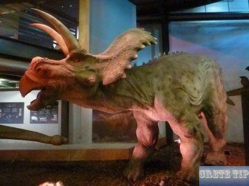 Replica dinosaur